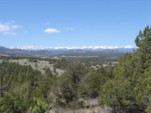 Colorado Land For Sale photo by Adobe Gold Properties